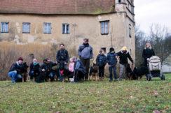 Vycházka s chodskými psy