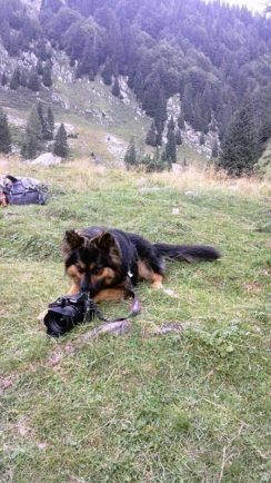 Hemi fotografem